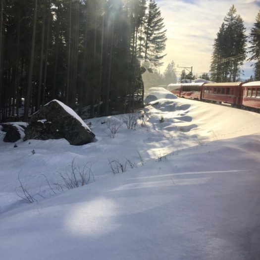 Bernina Red Train, a trip from Tirano to St. Moritz